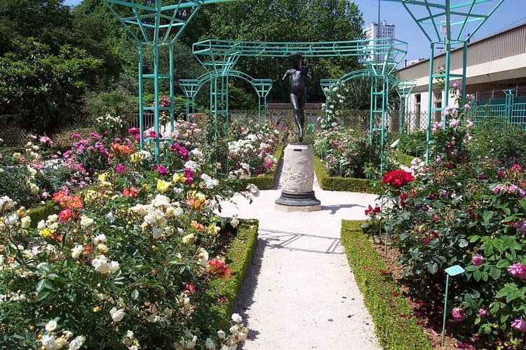 Roseraie du jardin botanique par maryse rozerot sur l for Bd du jardin botanique