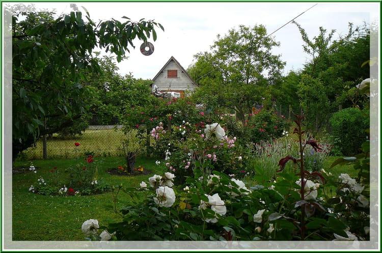 S r nit d 39 un petit jardin normand 4 par jacqueline for Le jardin normand