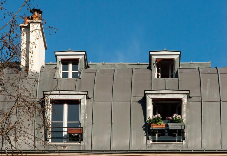 sous les toits de paris par alain roy sur l 39 internaute. Black Bedroom Furniture Sets. Home Design Ideas