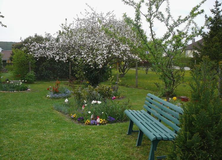 Un petit coin du jardin au printemps 2 par jacqueline for Au coin du jardin