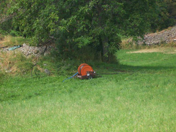Une pelouse bien entretenue par claudine mazzucca sur l for Recherche tonte pelouse